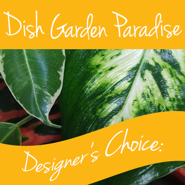 Dishgarden-gift-arrangement