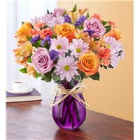plum-crazy-purple-orange-white-flowers-by-flowerama